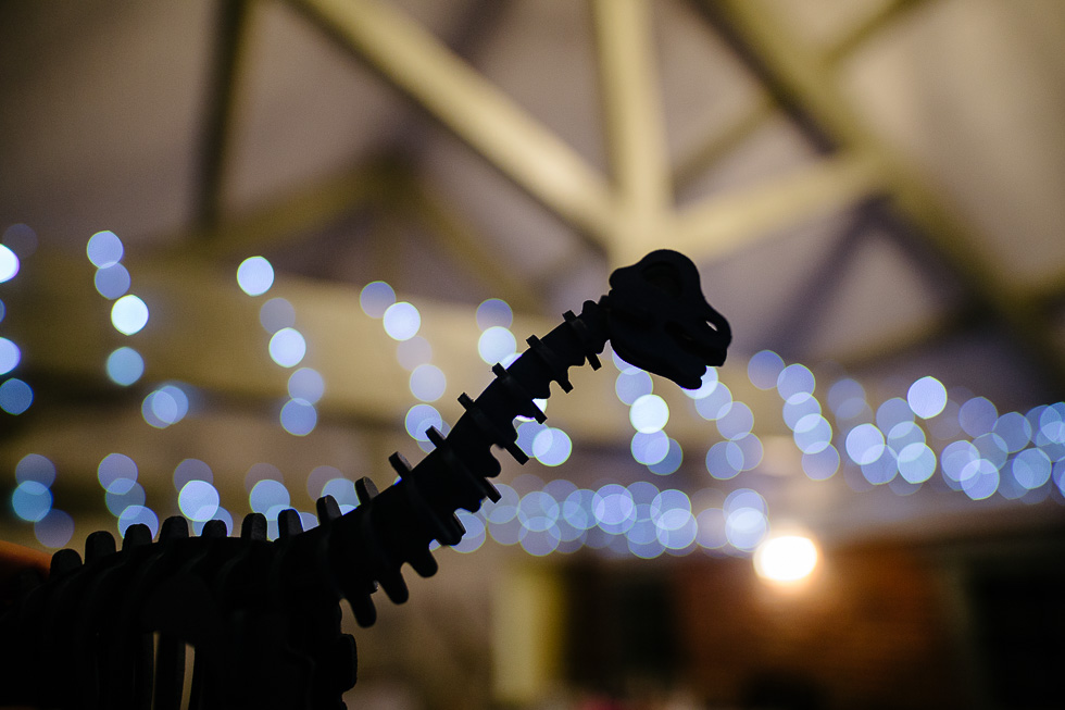 Jo and Andy dinosaur themed winter wedding at sopley mill dinosaur silhouette